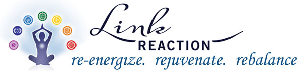 linkreaction logo
